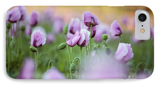 Lilac Poppy Flowers IPhone Case
