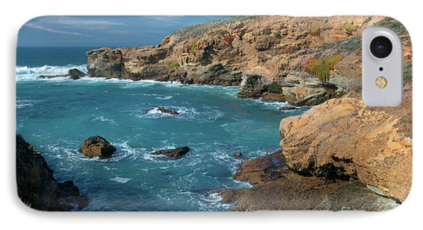 Point Lobos IPhone Case