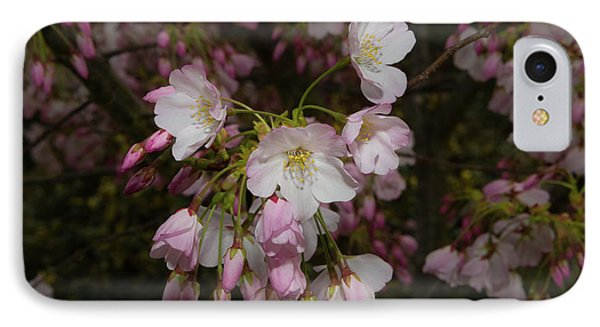 Silicon Valley Cherry Blossoms IPhone Case