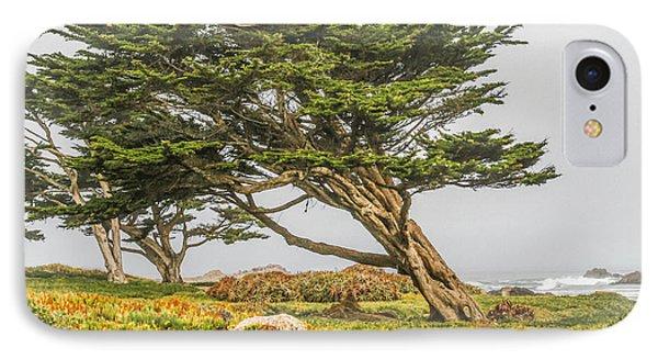 #7803 - Monterey, California IPhone Case