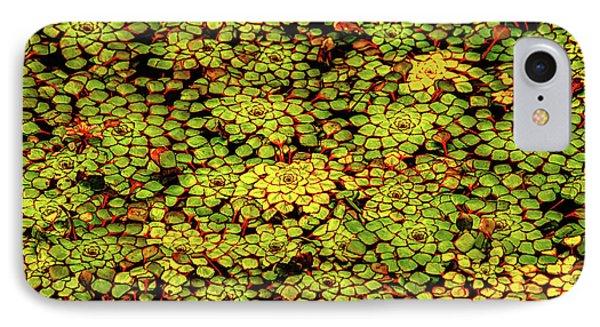 A Botanical Mosaic IPhone Case