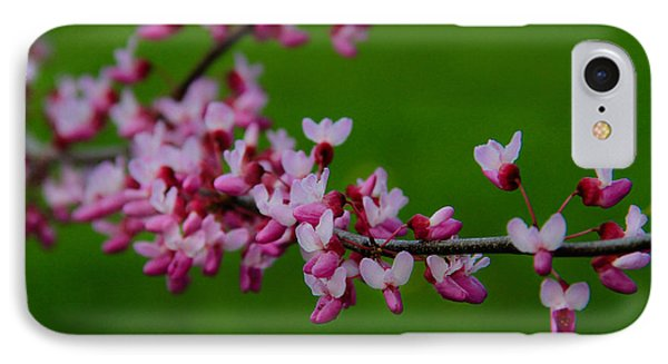 A Branch Of Spring IPhone Case