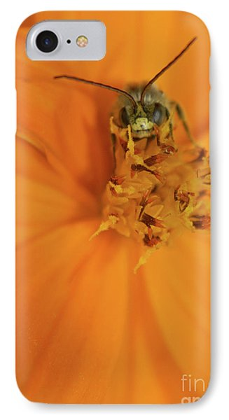 A Bugs Life IPhone Case