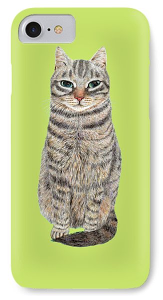 A Cool Tabby IPhone Case