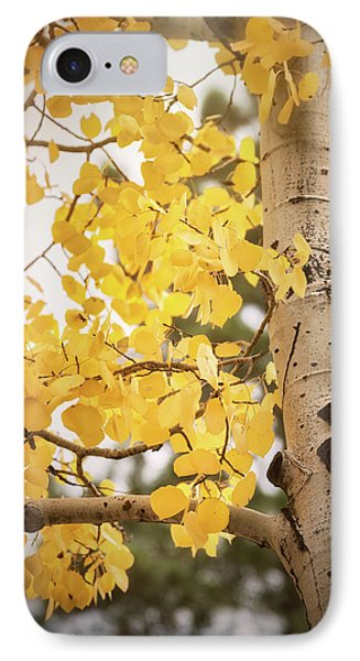 IPhone Case featuring the photograph A Crisp Fall Morning  by Saija Lehtonen