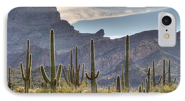 A Forest Of Saguaro Cacti IPhone Case