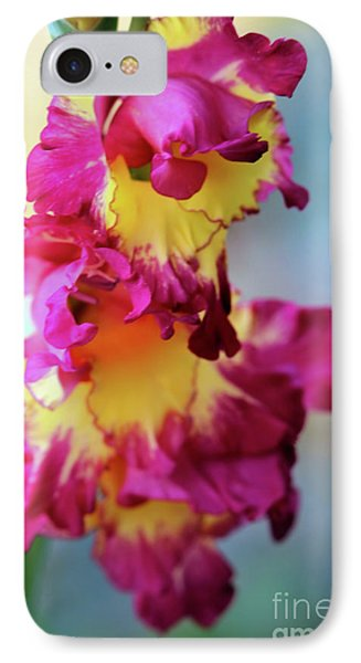 A Gladiolus 3 IPhone Case
