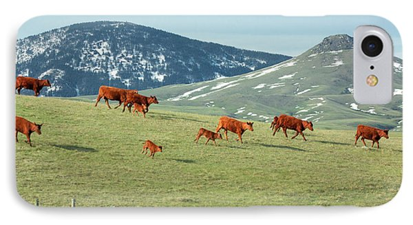 A Moving Herd IPhone Case