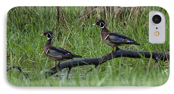 A Pair Of Wood Ducks IPhone Case