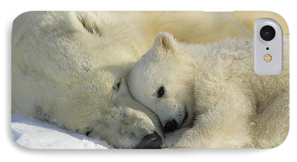 A Polar Bear And Her Cub Napping IPhone Case
