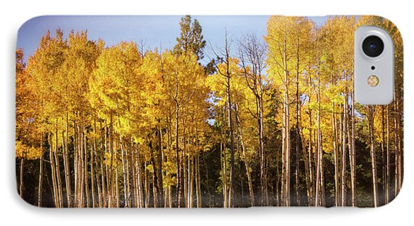 IPhone Case featuring the photograph A Wall Of Aspens  by Saija Lehtonen