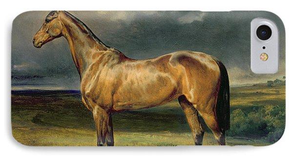 Horse iPhone 8 Case - Abdul Medschid The Chestnut Arab Horse by Carl Constantin Steffeck