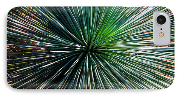 Abstract Nature Desert Cactus Photo 207 Blue Green IPhone Case