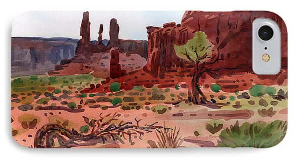 Afternoon In Monument Valley IPhone Case