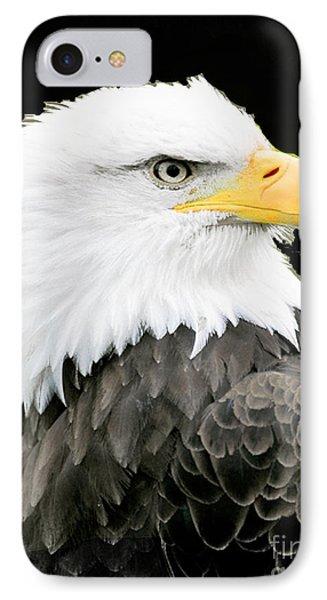 Alaskan Bald Eagle IPhone Case