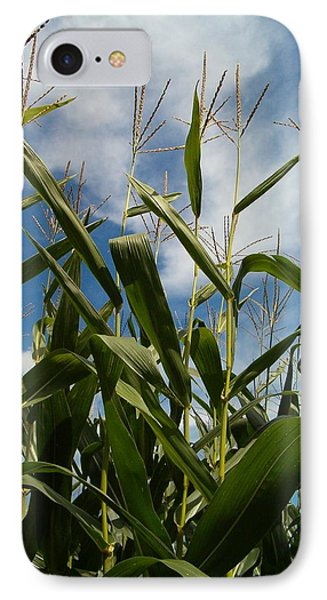 All About Corn IPhone Case