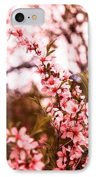 Almonds1 IPhone Case
