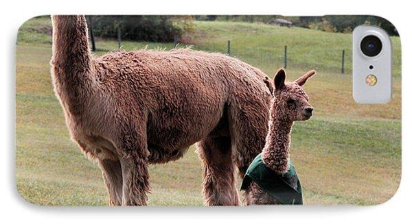 Alpaca And Cria IPhone Case