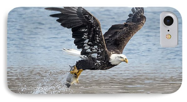 American Bald Eagle Taking Off IPhone Case
