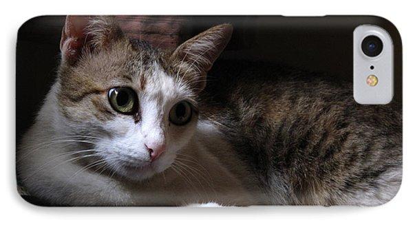 Ammani The Cat IPhone Case