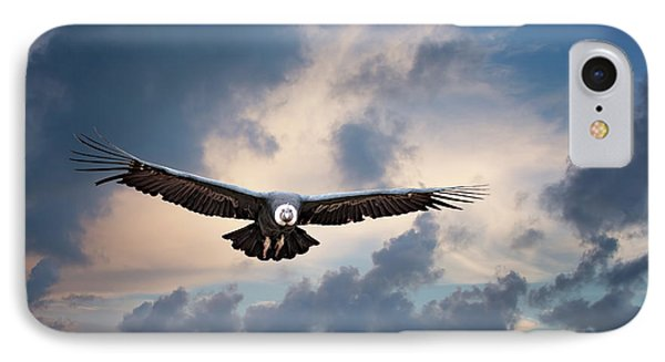 Andean Condor IPhone Case