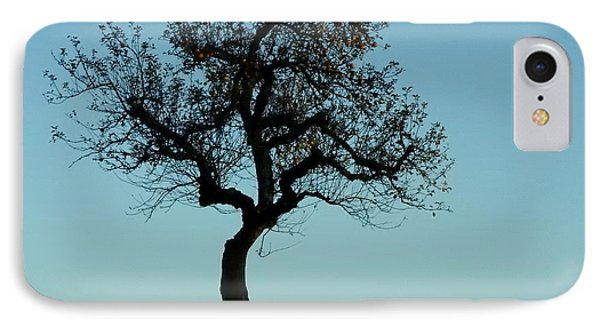 Apple Tree In November IPhone Case