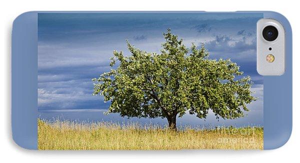 Apple Tree Summer Landscape IPhone Case