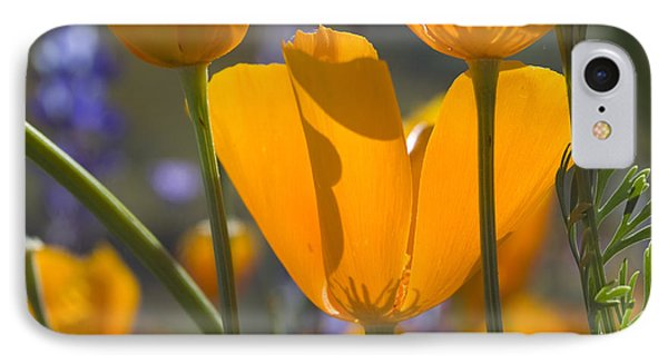 Arizona Spring Color IPhone Case
