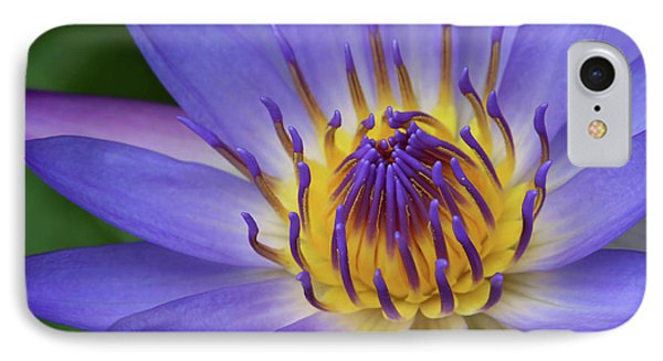 The Lotus Flower IPhone Case