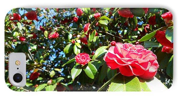 Uncommon Camellias IPhone Case