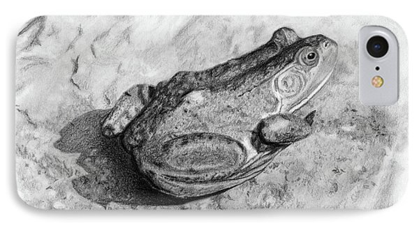 Frog On Rock IPhone Case