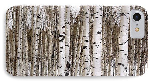 Aspens In Winter Panorama - Colorado IPhone Case