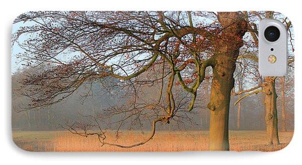 Autumn Colored Landscape IPhone Case