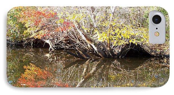 Autumn In Moyock IPhone Case