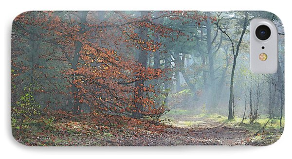Autumn In The Forest, Painting Like Photograph IPhone Case