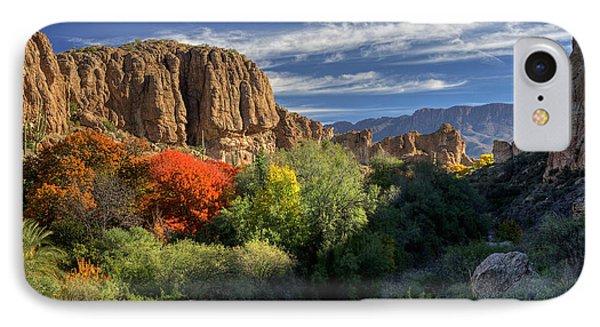 Autumn In The Garden IPhone Case