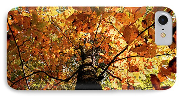 Autumn Is Glorious IPhone Case