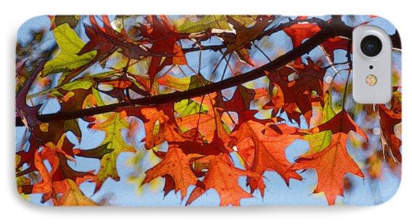 Autumn Leaves 16 IPhone Case