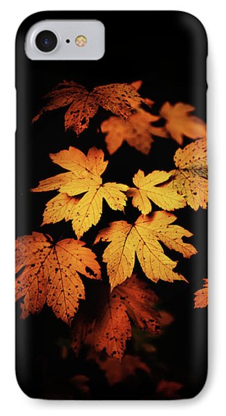 Autumn Photo IPhone Case