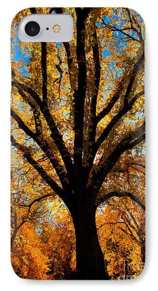 Autumn Season 4 IPhone Case