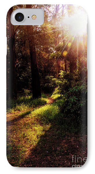 IPhone Case featuring the photograph Autumn Sunburst And Shadows By Kaye Menner by Kaye Menner