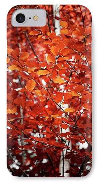 Autumn Triumph IPhone Case