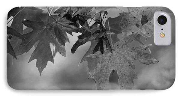 Autumn's Mystery IPhone Case