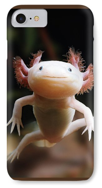 Axolotl Face IPhone Case