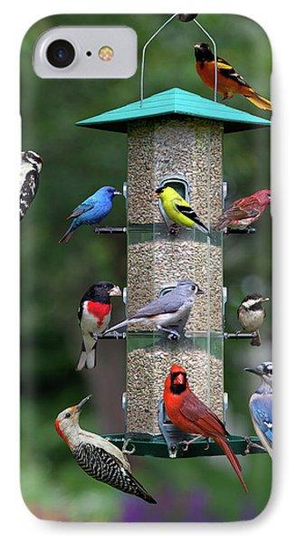Backyard Bird Feeder IPhone Case
