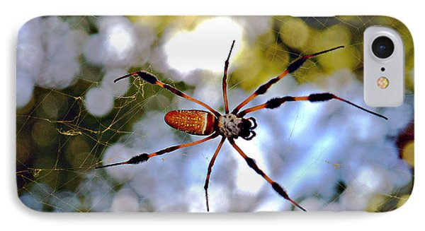 Banana Spider   1 IPhone Case