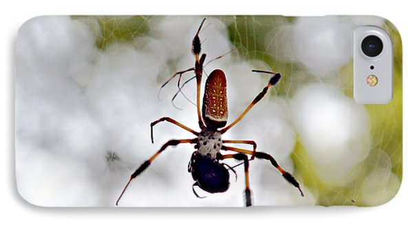Banana Spider Lunch Time 2 IPhone Case