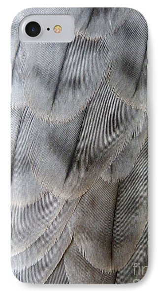 Barbary Falcon Feathers IPhone Case