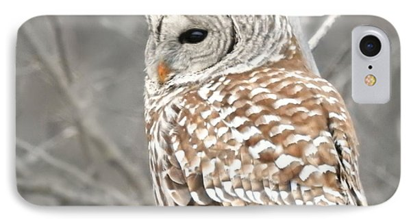 Barred Owl Close-up IPhone Case
