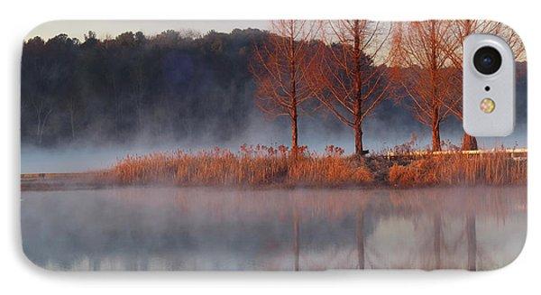 Barren, Beautiful Trees IPhone Case